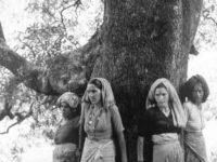 Ecofemminismi: letture, proposte, riflessioni