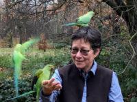 La forza delle storie naturculturali: rinascita olocenica, refugia, commons